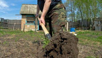 «Ехал каменщиком, а в итоге собирал червей за 5 рублей» — история одной поездки на шабашки по объявлению
