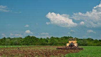 Земля самый ценный актив. Как купить участок земли и не ошибиться